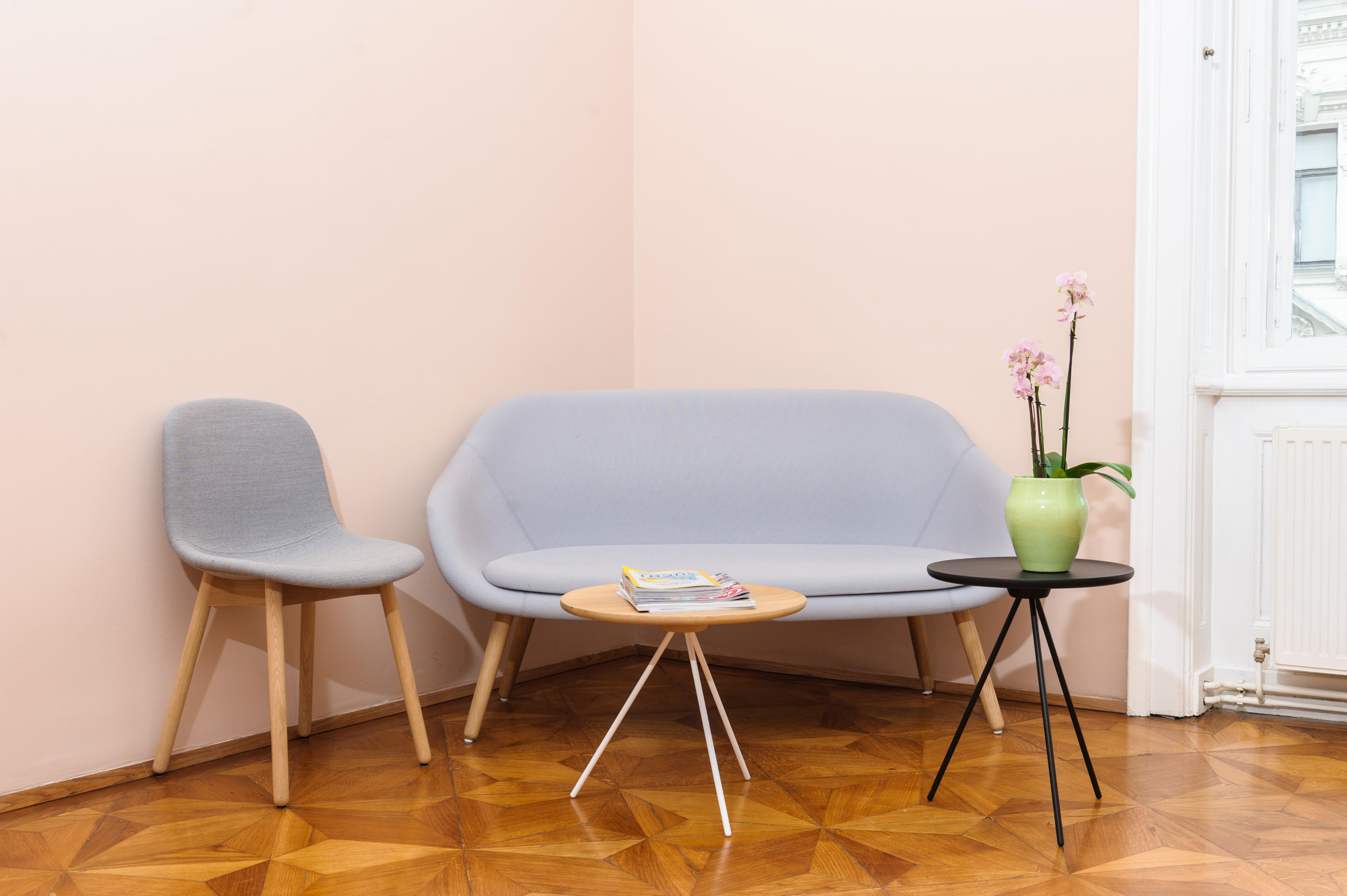 Sofa im Wartebereich in der kieferorthopädischen Ordination Dr. Elisabeth Pittschieler für Zahnspangen und Kiefergelenksprobleme CMD im Herzen von Wien.